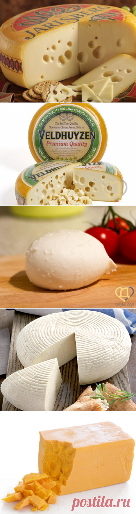Рецепты сыра | Сырный Дом: все для домашнего сыроделия