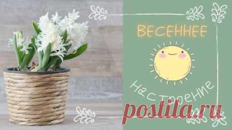 Весеннее настроение. Релакс под прекрасную музыку  — Смотреть в Эфире Весна! Релакс под прекрасную музыку для повышения настроения и самочувствия. Здоровья, красоты, уюта и гармонии вам. В каждый ваш день, в каждый ваш …