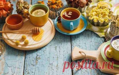 Мед с травами: польза, показания, противопоказания и рецепты