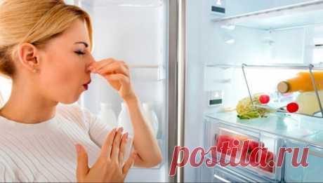Что поможет убрать запах в холодильнике   iHelp   Яндекс Дзен