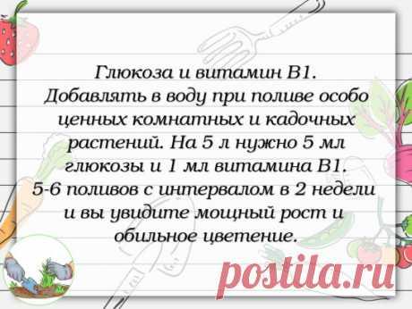 #совет