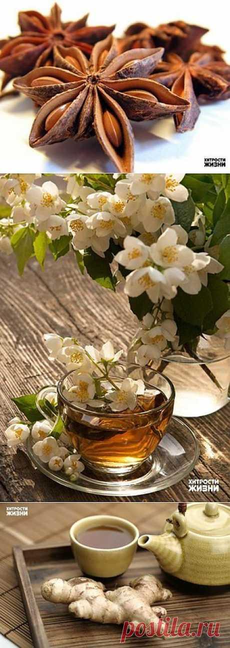 6 полезных добавок к чаю: