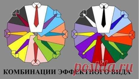 ля любителей выглядеть не только ярко, но и грамотно: цветовые комбинации рубашки и галстука | Хитрости жизни