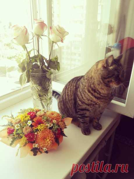 Макс в цветах