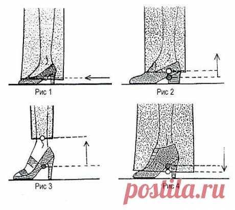 Как определить длину брюк Неправильная длина брюк может полностью испортить внешний облик. Именно поэтому важно знать несколько правил, которыми нужно руководствоваться при определении правильной длины низа брюк и их последующем укорачивании.  При построении брюк откладывается, прежде всего, Длина брюк сбоку и только потом – фактическая желаемая длина брюк.  Необходимую и соответствующую выбранному типу брюк величину Длины брюк следует выбирать согласно представленных крит...