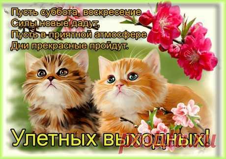 «25790940.jpg (1134×801)» — карточка пользователя Владимир Н. в Яндекс.Коллекциях
