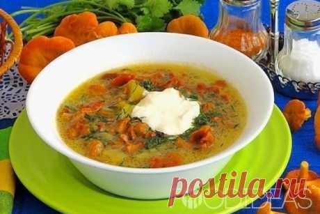 Суп из лисичек - рецепт приготовления с фото