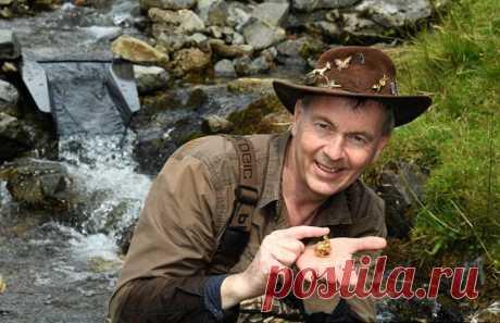 В Шотландии объявили о находке самого крупного в британской истории золотого самородка | События