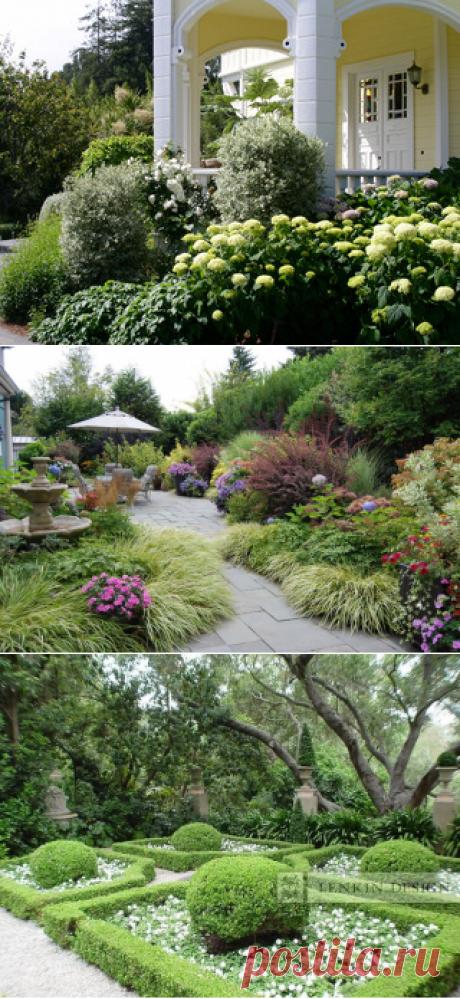 Декоративные кустарники в саду: выбираем декоративные деревья и кустарники для дачи