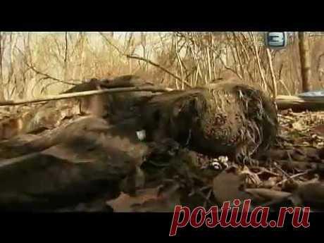 Аномалии на Земле / Документальный фильм - YouTube