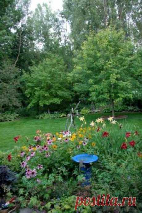 ландшафтный дизайн марина денисевич Posts About Gardening On Postila