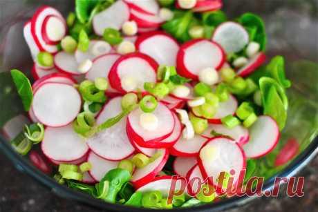 Весенние салаты - 10 вкусных рецептов » Женский Мир