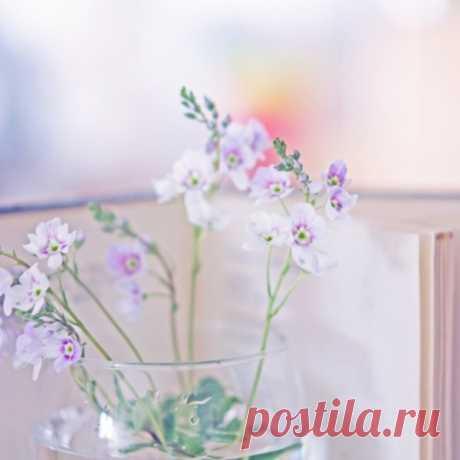 """Весна уже во всем... - Блог """"Остров любви"""" - Группы Мой Мир"""