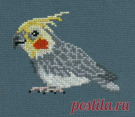 Cockatiel counted cross-stitch chart   Etsy