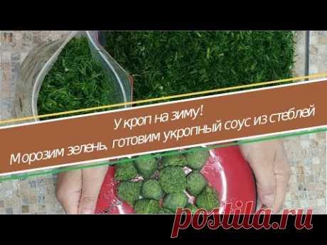УКРОП НА ЗИМУ - укропный соус, заморозка укропа, кубики из укропного соуса для борща