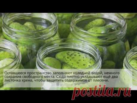 Простой рецепт вкусных солёных огурцов: видео