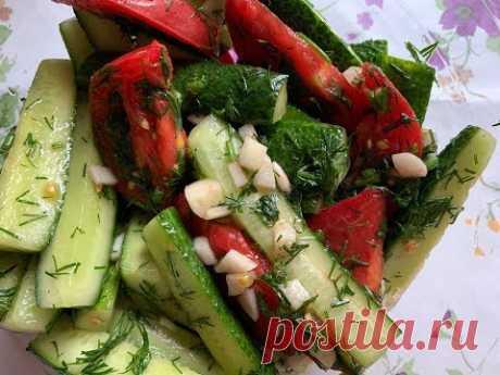 Los pepinos poco salados y los tomates en el paquete