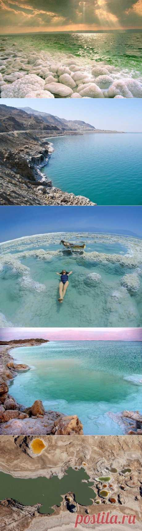 (+1) тема - Интересности о Мертвом Море | УДИВИТЕЛЬНОЕ