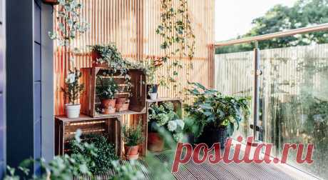 Как превратить незастекленный балкон в патио для летнего отдыха . Милая Я
