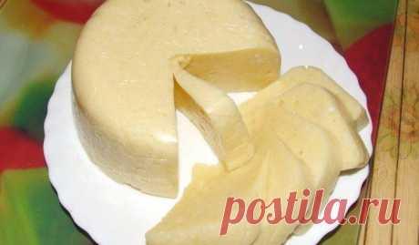Домашний сыр за 3 часа! Невероятно вкусный сыр, который содержит только натуральные продукты и ничего лишнего ---
