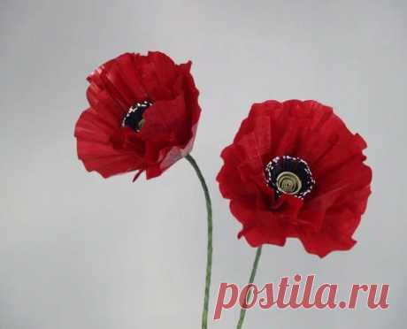 Poppies from paper. | FROM PAPER the HANDS