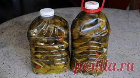 Огурцы в бутылке, похожие на бочковые – В РИТМІ ЖИТТЯ