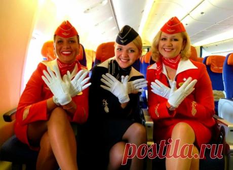 Что выбрать: капризный чартер или регулярный рейс, который встанет в «копеечку»? Рассказываю о «голых» фактах | Отпуск Forever | Яндекс Дзен