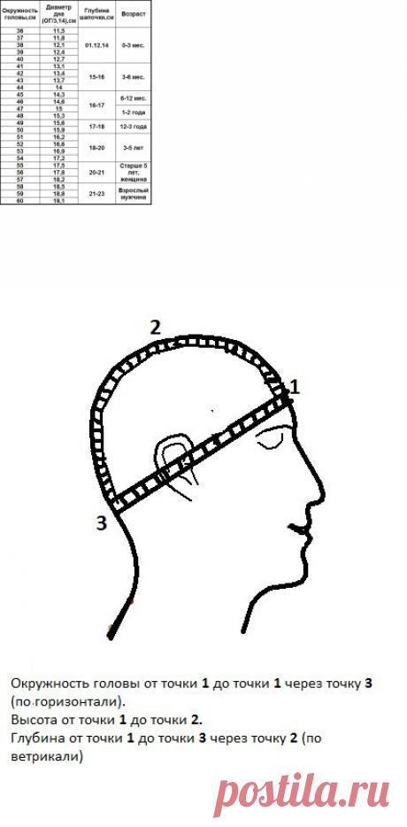 Таблица размеров головы. | Таблица размеров головы