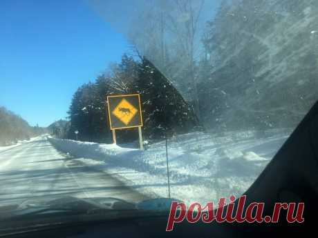 На дорогах провинции Онтарио. Канада