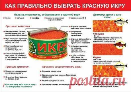 как правильно выбрать красню икру - Простые рецепты Овкусе.ру