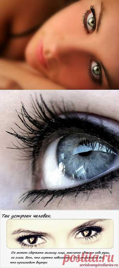 (+1) тема - О чем говорят женские глаза.... | ЛЮБИМЫЕ ФОТО