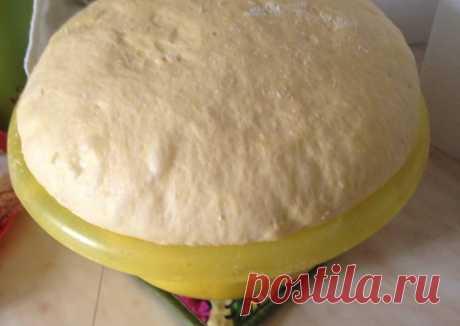 "Вкусное домашнее дрожжевое тесто ""Пушистик"" Автор рецепта Лия Старкова 11 лет - Cookpad"