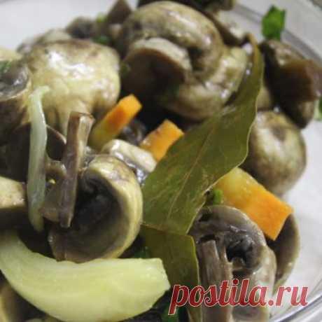 Соленые грибы. Как правильно и вкусно замариновать?