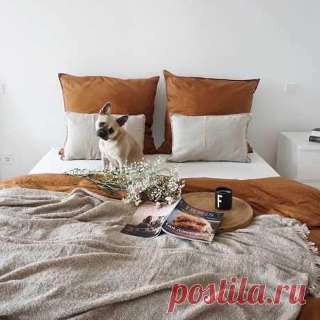 «Что на земле может быть роскошнее, чем диван, книга и чашка кофе?», — Энтони Троллоп. ☕☀ #HMMood