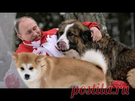 "The favourite song of Putin ""So missed I...\"""