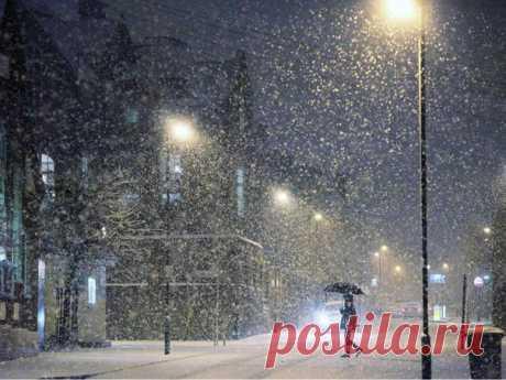 Снегопад — единственная погода, которую я люблю. Он меня почти не раздражает, в отличие от всего остального. Я часами могу сидеть у окна и смотреть, как идет снег. Тишина снегопадения. Она хороша для разных дел. Самое лучшее — смотреть сквозь густой снег на свет, к примеру на уличный фонарь. Или выйти из дому, чтобы снег на тебя ложился. Вот оно, чудо. Человеческими руками такого не создать.