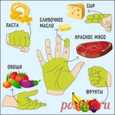 Сколько еды нужно съедать за раз  Не обязательно садиться на жесткую диету и есть одни брокколи, — достаточно просто ограничить себя в количестве еды.   5 принципов «ручной» диеты  1. Пригоршня из двух сложенных ладоней — это то количество овощей, которое нужно съесть за день.  2. Передняя часть кулака — дневная норма углеводов (рис, другие каши, макаронные изделия, хлеб).  3. Открытая ладонь без учета пальцев показывает, какой кусок мяса нужно съедать в день.  4. Сжатый к...