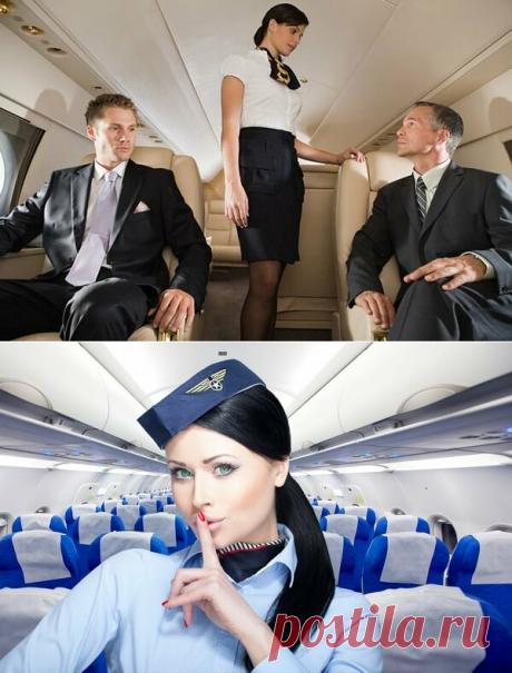 Можно ли в самолете подкупить стюардессу? | Travel Best | Яндекс Дзен