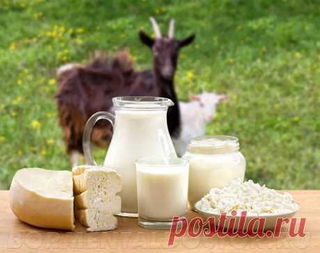 молочные продукты фото: 6 тыс изображений найдено в Яндекс.Картинках