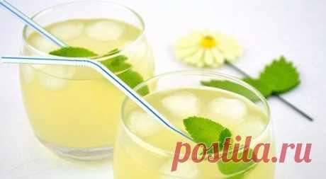 Мятный лимонад,способный умерить аппетит,пьем перед едой. — Мегаздоров