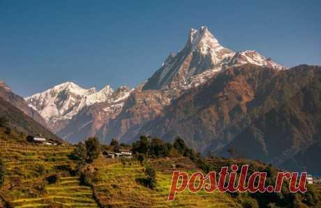 Пройти онлайн 30 советов от непальских мудрецов - Интернет опросы