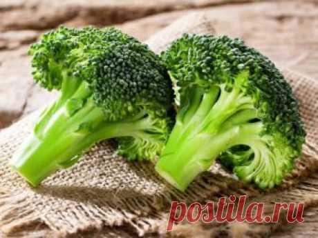 Как готовить брокколи: топ-5 рецептов вкусных блюд полезных для здоровья  Все знают, что брокколи – крайне полезная штука. Но убедить в этом свой организм крайне сложно, а уж уговорить ребёнка, что вот эту странную зеленую штуку нужно есть, так и вовсе нереально. Подробнее…