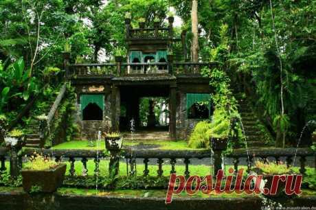 Парк Паронелла: самое волшебное место в тропических джунглях Австралии