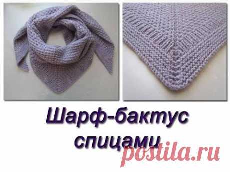 Вяжем теплый шарф-бактус спицами
