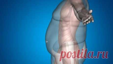 Волшебная точка, помогающая уменьшить избыточный вес Дополнительной точкой, помогающей справиться с лишним весом, появившимся вследствие психологической травмы или шока является точка Ку-фан.  Дополнительной точкой, помогающей справиться с лишним весом,…