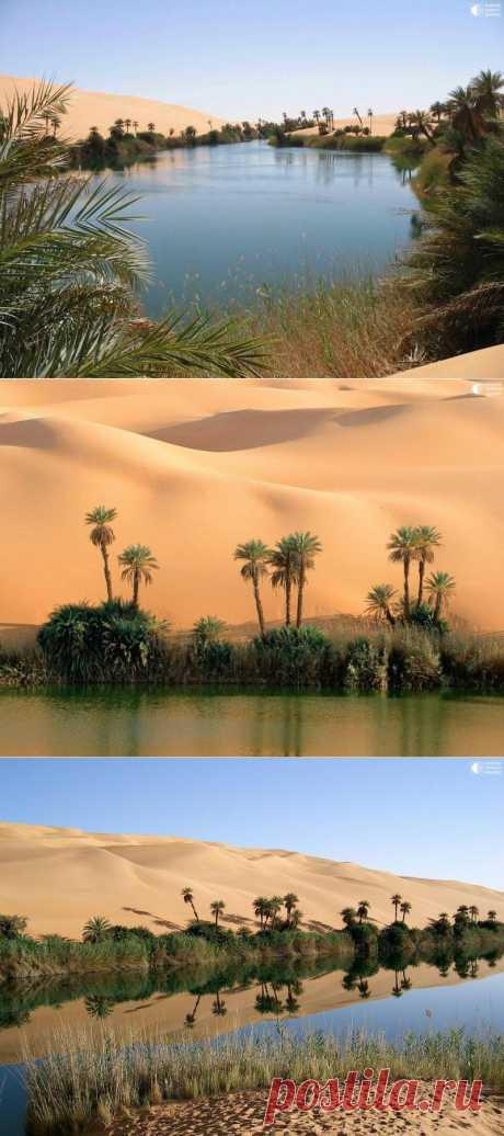 Сказочный оазис в африканской пустыне | В отпуск хочу!