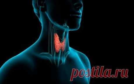 Как запустить по новой работу щитовидки, чтобы ускорить метаболизм