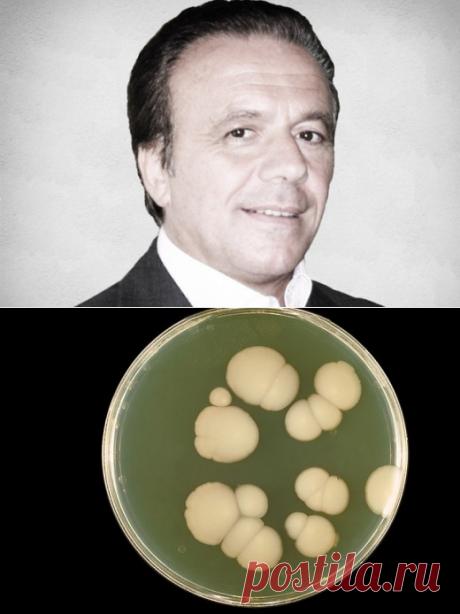 Тулио Симончини: Рак — излечимое грибковое заболевание