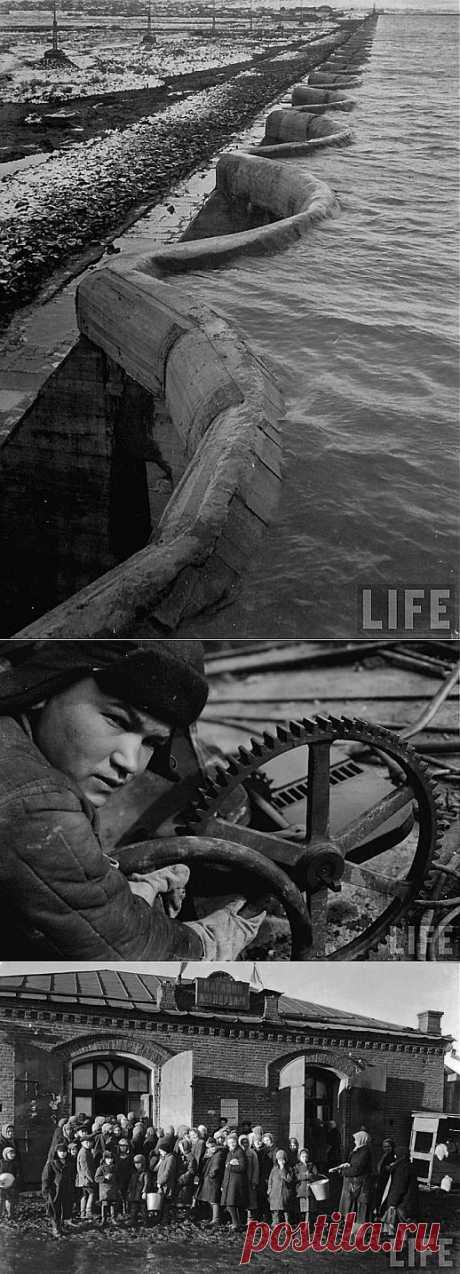 Советский союз глазами Маргарет Берк-Уайт | Дети перестройки