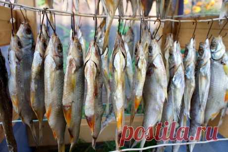 Рецепты вкусной вяленой рыбы
